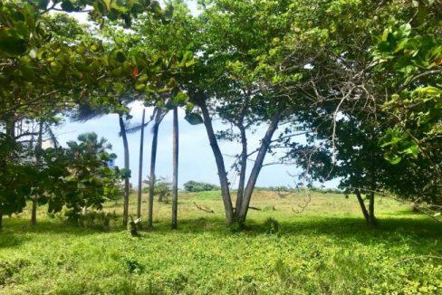 Boasting-A-Superb-Location-Ushombi-5