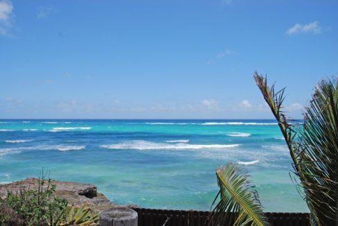 Inch-By-Inch-Barbados-Ushombi-12