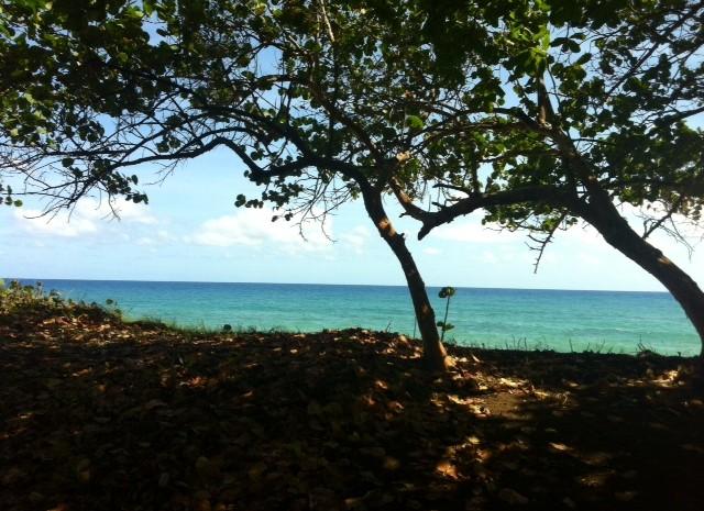 Cabarete-Beachfront-Lots-Dominican-Republic-Ushombi-3