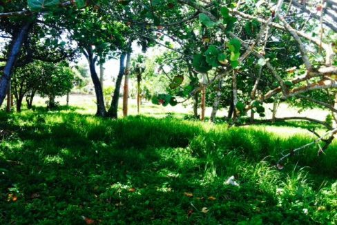 Cabarete-Beachfront-Lots-Dominican-Republic-Ushombi-5