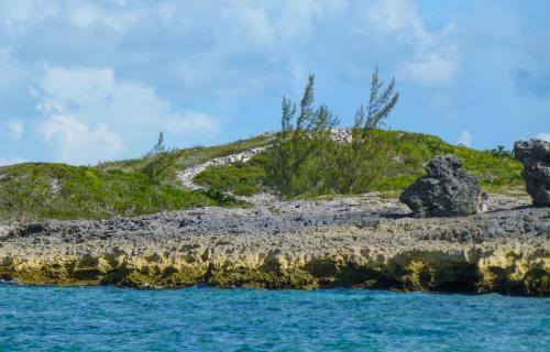 Spectabilis-Island-Bahamas-Ushombi-10
