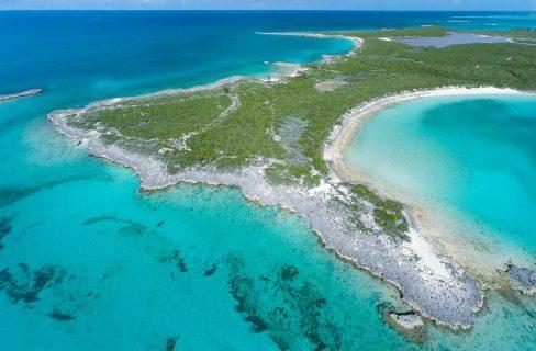 Spectabilis-Island-Bahamas-Ushombi-5