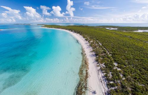 Spectabilis-Island-Bahamas-Ushombi-6