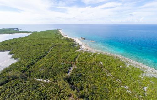 Spectabilis-Island-Bahamas-Ushombi-7