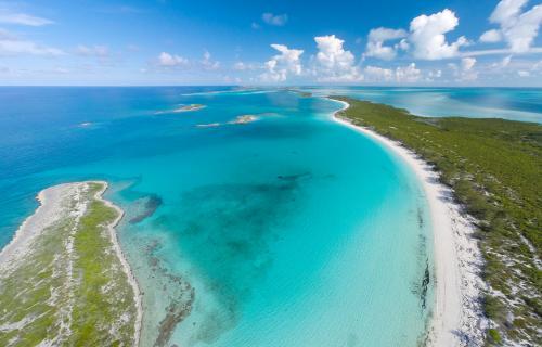 Spectabilis-Island-Bahamas-Ushombi-9
