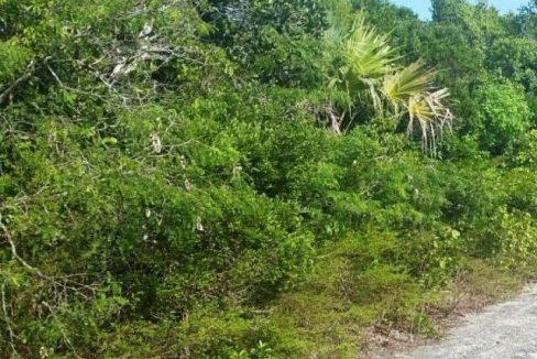 17120-frangipani-road-bahama-sound-18-bahama-sound-exuma-bahamas-ushombi-5