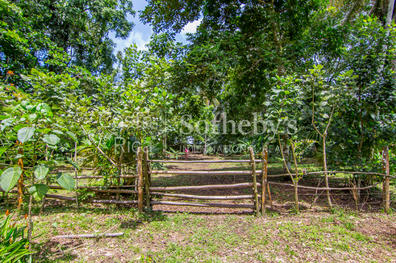 APM-Terminals-Development-Property-Moín-Limon-Costa-Rica-Ushombi-12