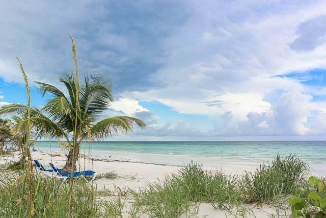 Beachfront-Cottage-in-East-Grand-Bahama-Ushombi-2