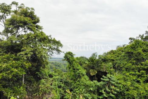Cahuita-Ocean-and-Jungle-View-Farm-Development-Costa-Rica-Ushombi-10
