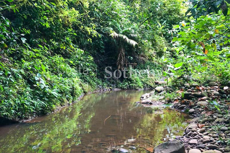 Cahuita-Ocean-and-Jungle-View-Farm-Development-Costa-Rica-Ushombi-11
