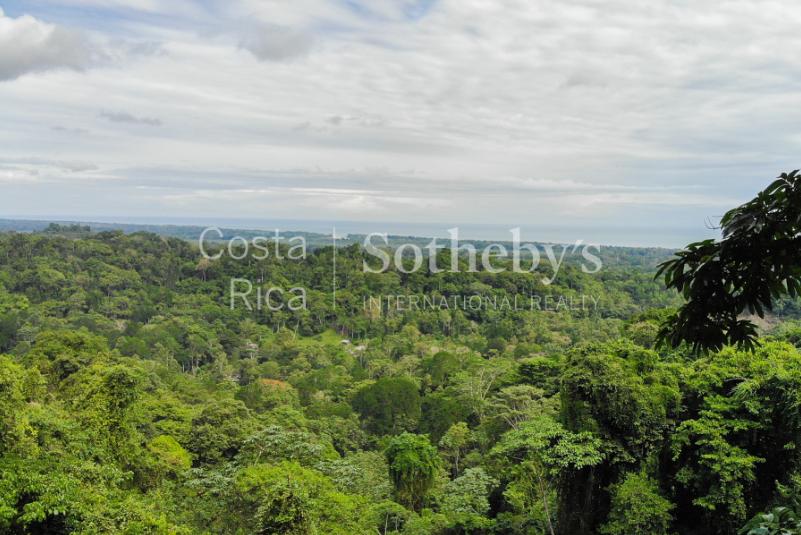 Cahuita-Ocean-and-Jungle-View-Farm-Development-Costa-Rica-Ushombi-3