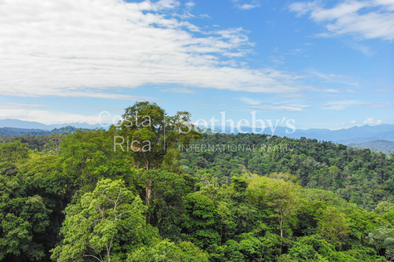 Cahuita-Ocean-and-Jungle-View-Farm-Development-Costa-Rica-Ushombi-4