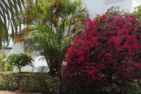 Hacienda-La-Luna-Villa-Dominican-Republic-Ushombi-12