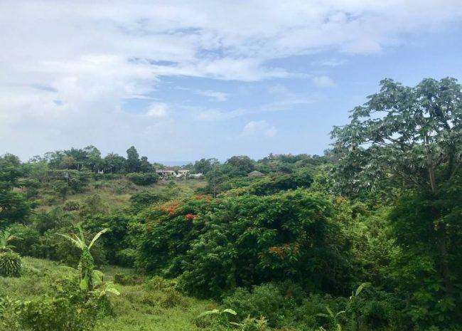Hacienda-La-Luna-Villa-Dominican-Republic-Ushombi-4