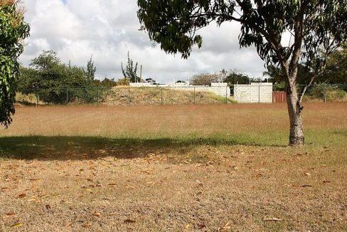 Residential-Lot-Rowans-Drive-Lot-Barbados-Ushombi-4