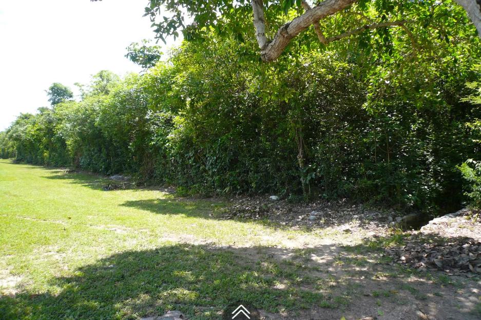bougainvillea-drive-lyford-cay-lyford-cay-bahamas-ushombi-5