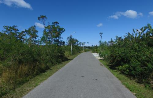 dragonfly-drive-south-ocean-estates-bahamas-ushombi-2