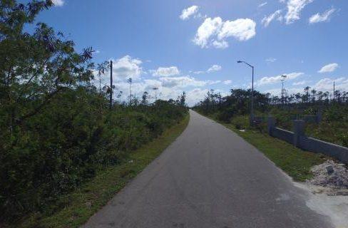dragonfly-drive-south-ocean-estates-bahamas-ushombi-4