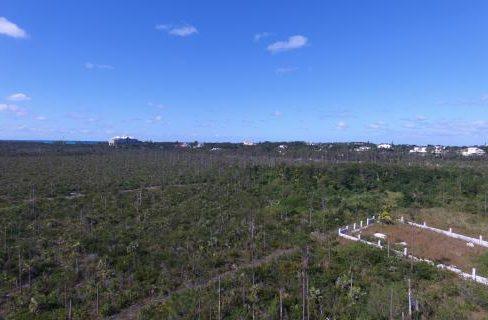 dragonfly-drive-south-ocean-estates-bahamas-ushombi-6