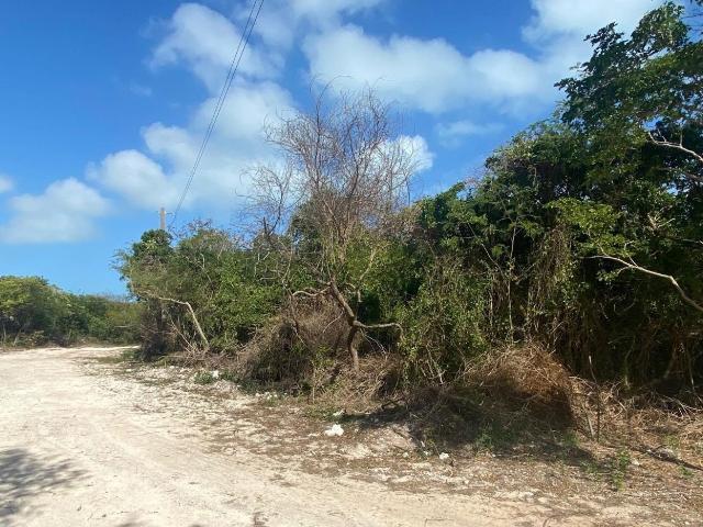 lot-20-admiralty-road-exuma-harbour-estates-exuma-cays-bahamas-ushombi-24