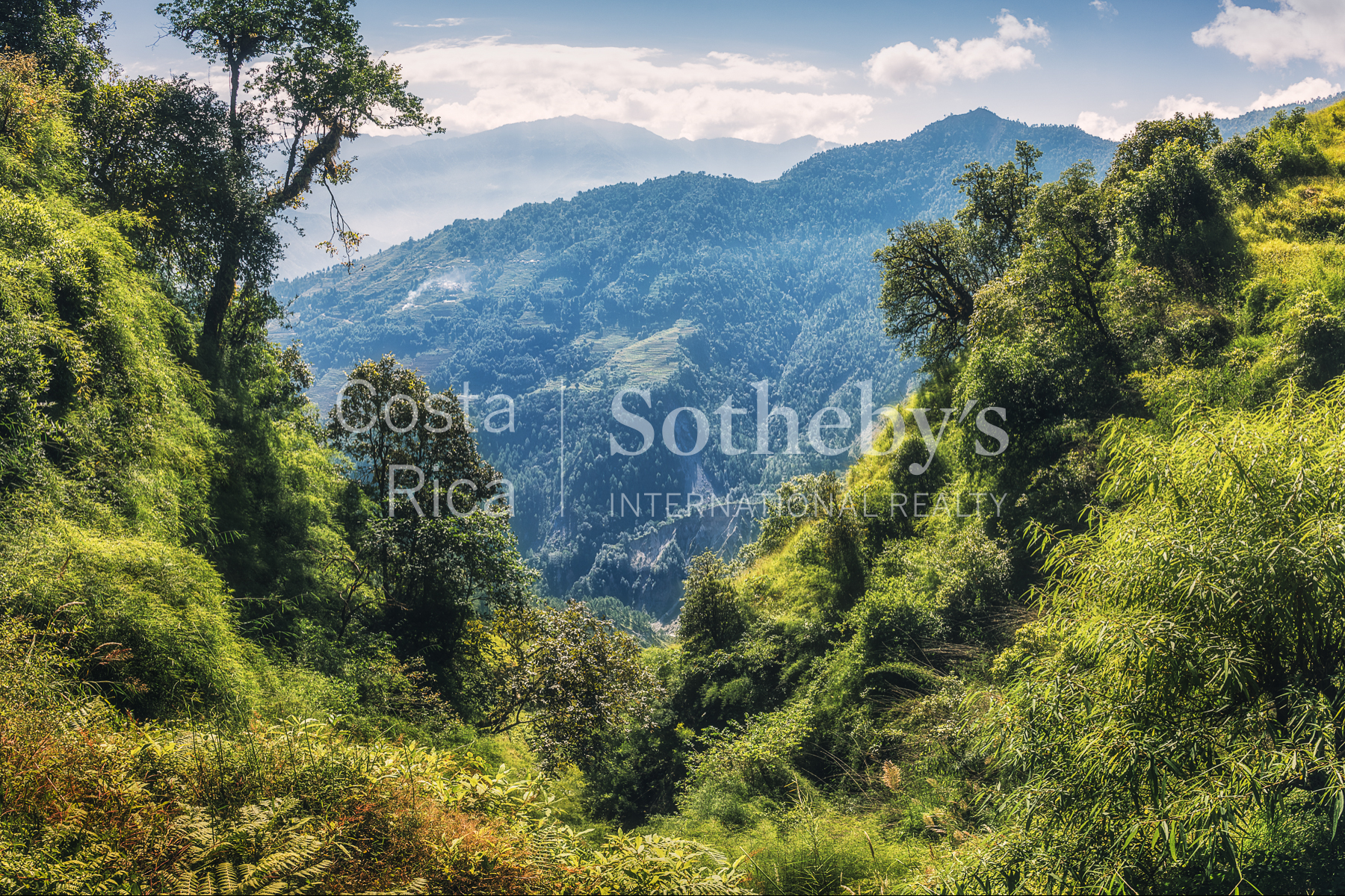 2,500 Acre Conservation Land With Precious Woods
