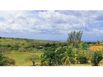 Westerlee-Westmoreland-St-James-Barbados-Ushombi-3