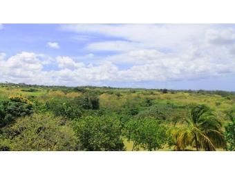 Westerlee-Westmoreland-St-James-Barbados-Ushombi-5