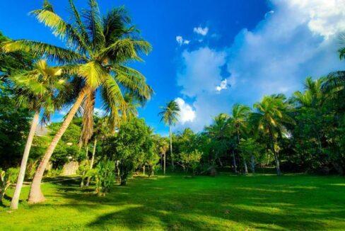 West-Bay-Street-Nassau-Bahamas-Ushombi-1