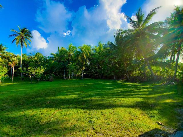 West-Bay-Street-Nassau-Bahamas-Ushombi-6