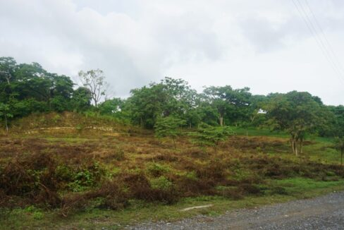 2.6-acres-land-in-Palm-Beach-Roatan-Island-Honduras-Ushombi-2