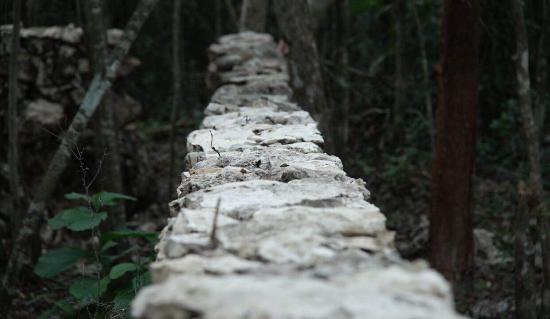 PURA-Mza.-180-04-Tulum-Quintana Roo-Mexico-Ushombi-6