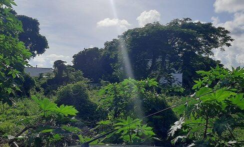 eastern-district-land-lot-nassau-bahamas-ushombi-1