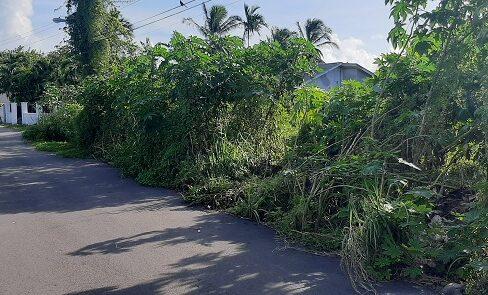 eastern-district-land-lot-nassau-bahamas-ushombi-2