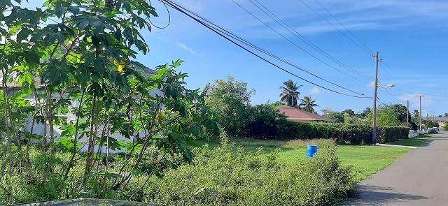 Eastern District Land Lot