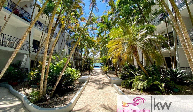 Cabarete-Sun-Soaked-Apartment-Cabarete-Dominican-Republic-Ushombi-2