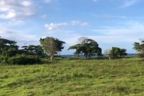 development-land-residential-for-sale-in-st-ann-jamaica-ushombi-2