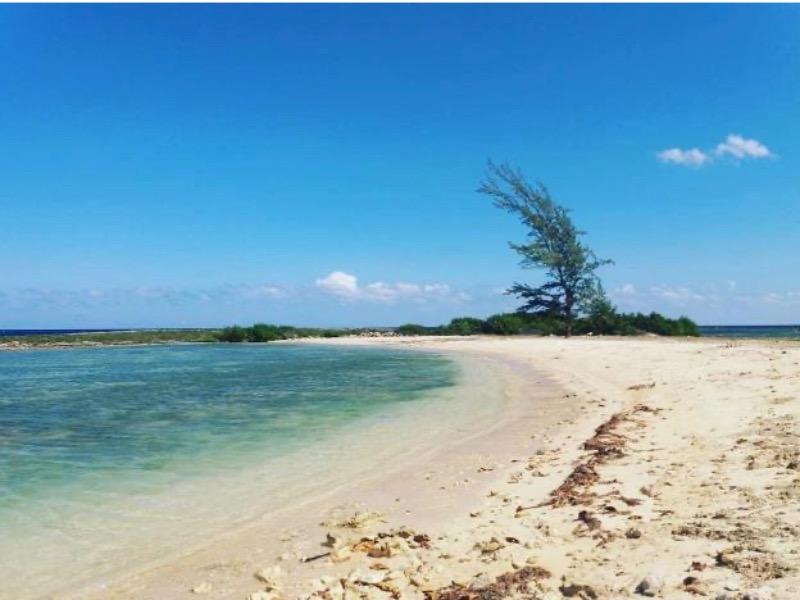 development-land-residential-for-sale-in-st-ann-jamaica-ushombi-3