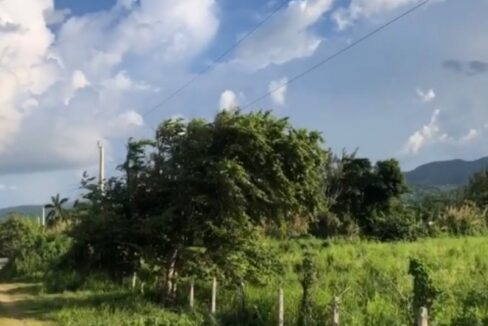 development-land-residential-for-sale-in-st-ann-jamaica-ushombi-5
