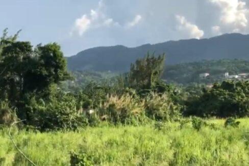 development-land-residential-for-sale-in-st-ann-jamaica-ushombi-8