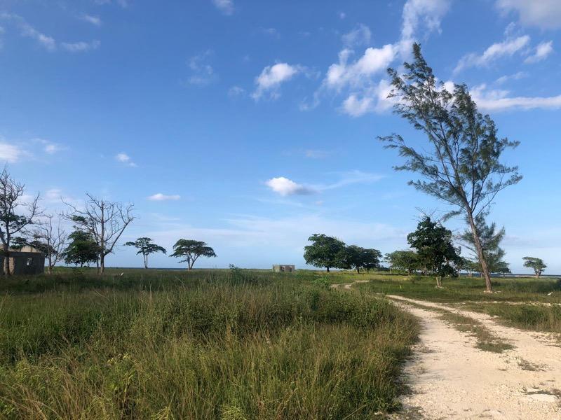 development-land-residential-for-sale-in-st-ann-jamaica-ushombi-9