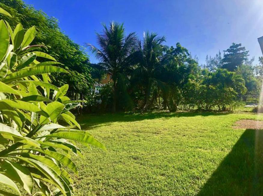pine-avenue-nassau-bahamas-ushombi-17