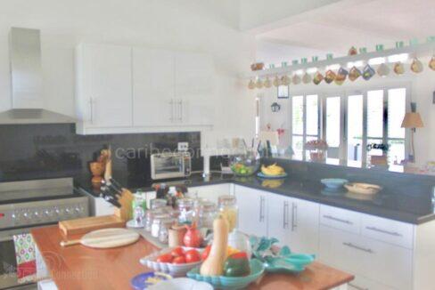 punta-cana-beachfront-villa-in-fantastic-location-punta-cana-dominican-republic-ushombi-7
