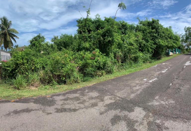 buttownwood-hills-new-providence-paradise-island-bahamas-ushombi-2