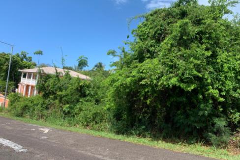 buttownwood-hills-new-providence-paradise-island-bahamas-ushombi-4