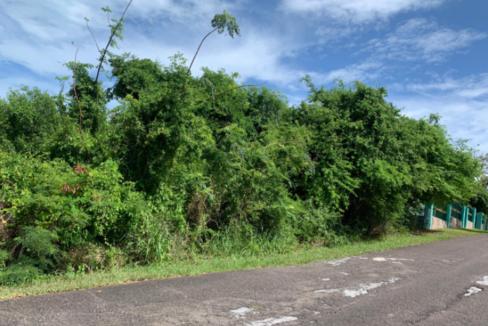 buttownwood-hills-new-providence-paradise-island-bahamas-ushombi-5
