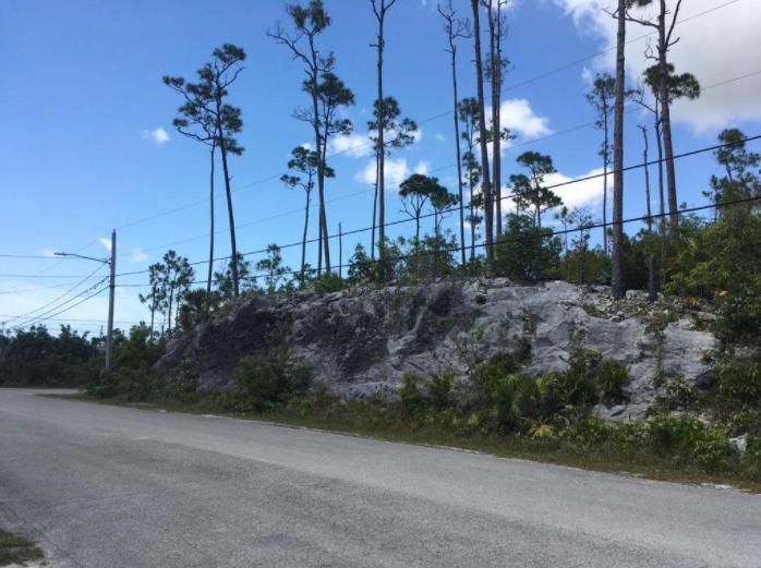 chesapeake-subd-lot-grand-bahama-bahamas-ushombi-3