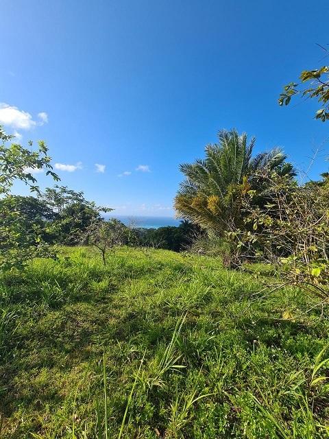 5br-home-in-st-anns-bay-st-ann-bay-jamaica-ushombi-10