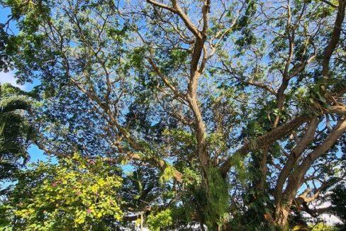 5br-home-in-st-anns-bay-st-ann-bay-jamaica-ushombi-14