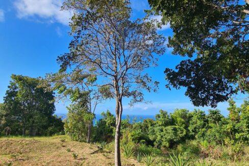 5br-home-in-st-anns-bay-st-ann-bay-jamaica-ushombi-9