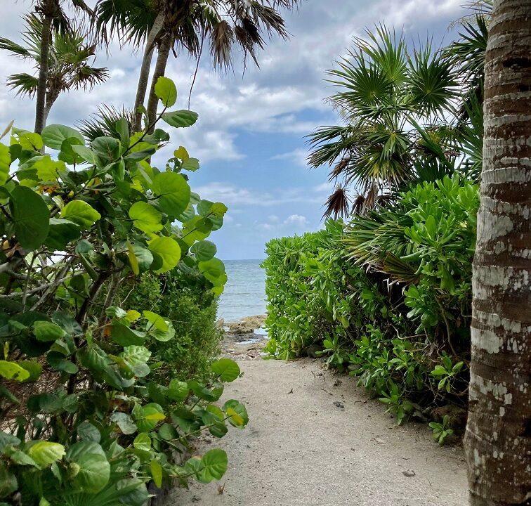 oceanfront-akumal-property-akumal-quintana-roo-mexico-ushombi-24